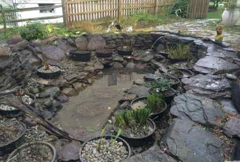 How to make pond on the site